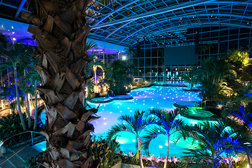 "Vedere panoramică din interior ""The Palm"""